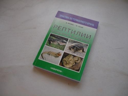 ./inhalt/Publikationen/slides/Reptilien.jpg